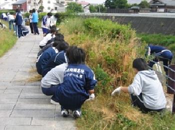 芹川 活動写真