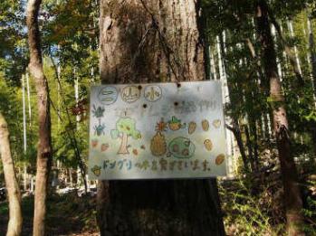 久保川と天王山の森を守る会の