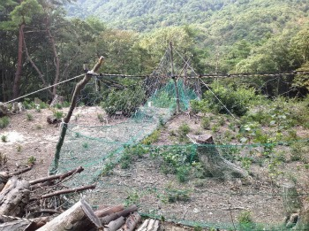 山門水源の森を次の世代に引き継ぐ会 活動写真