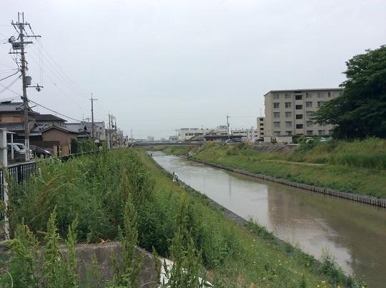 古川を美しくする会 活動の写真