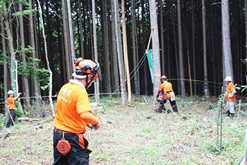 甲賀木の駅プロジェクト 活動の写真