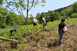 麻生里山センターの活動写真