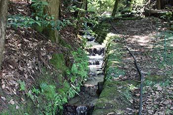 子どもと川とまちのフォーラム の活動画像