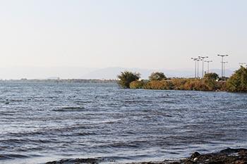 湖国ひとまちネット 活動の写真