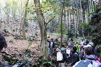 近江・里山の自然と文化財を学ぶ会の活動写真