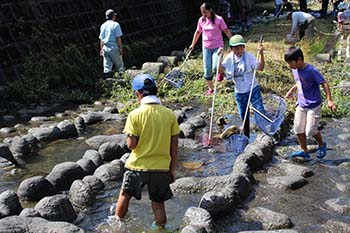 古橋のオオサンショウウオを守る会の活動写真