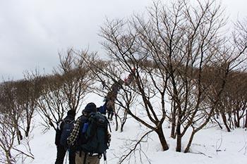 高島トレイルクラブ活動写真