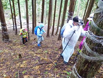 日本熊森協会滋賀県支部 活動のようす画像