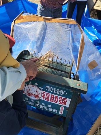 NPO法人 京都桑田村 活動のようす画像