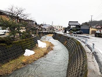 滋賀のオオサンショウウオを守る会 活動の様子画像 古橋の町を流れる大谷川