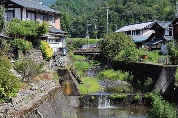 滋賀のオオサンショウウオを守る会 活動の様子画像 大谷川の堰