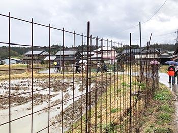 Tread活動のようす画像(雨の中、鉄柵に囲まれた田んぼの道を歩く)
