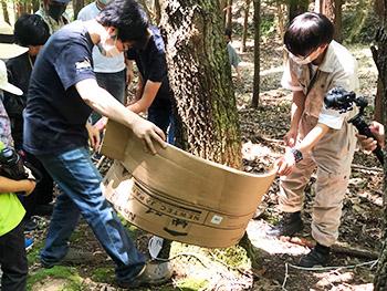 昆虫教室で林に出かけてトラップを木の幹から外しているところ