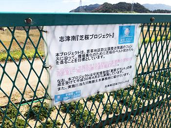 志津南『芝桜プロジェクト』の活動のようす画像