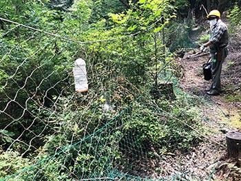西山自然保護ネットワークの活動のようす画像