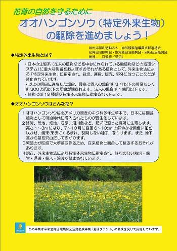 自然観察指導員京都連絡会の活動のようす画像