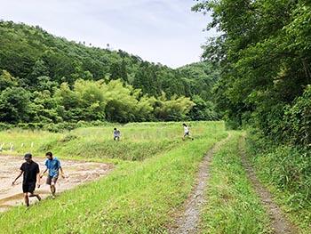 志賀郷ゴキゲン化計画 活動のようす画像 藤谷の奥のようす