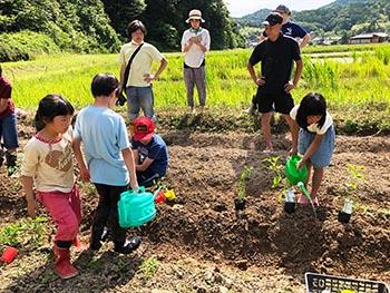 志賀郷ゴキゲン化計画 活動のようす画像 トマトの苗などを植える子どもたち